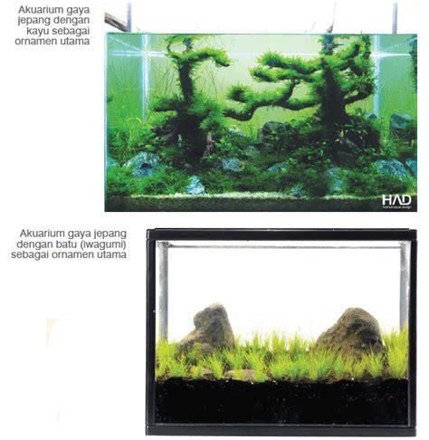 desain kayu aquascape aneka desain aquascape terbaik panduan cara bertanam