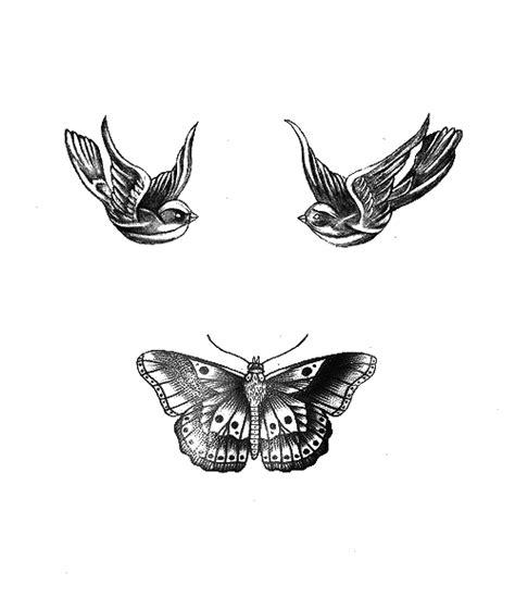butterfly tattoo harry transparent tattoos tumblr