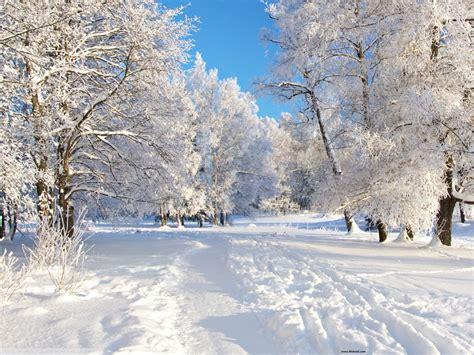 winter backgrounds  desktop pixelstalknet