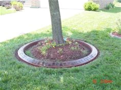 1000 images about tree base garden on pinterest a tree trees and old bricks