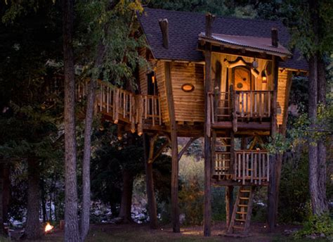 small tree house designs small and artistic tree house design by green line architects designtodesign