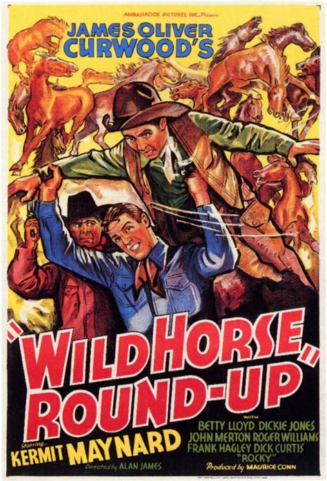film round up wild horse round up movie posters from movie poster shop