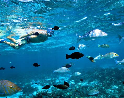 Open Plan by Ningaloo Reef Fly Stay Experience Tourism Western Australia