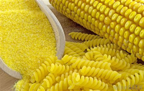 what is a corn what is corn pasta with pictures