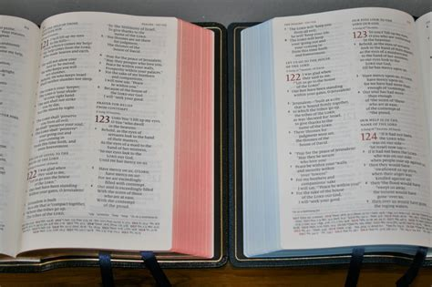 schuyler nkjv quentel comparisons bible buying guide