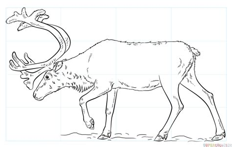 doodle draw reindeer how to draw a reindeer step by step drawing tutorials