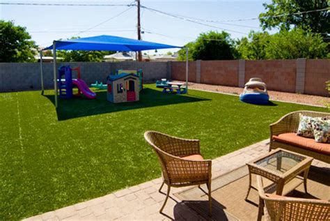 backyard grass alternatives mulch backyard dogs specs price release date redesign