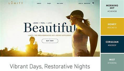 website color schemes 2016 beautiful website color schemes color schemes for websites