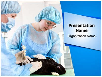powerpoint templates for veterinarians veterinary powerpoint template background