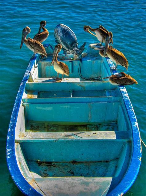 pelican style boat 17 best images about small wooden fishing boats on