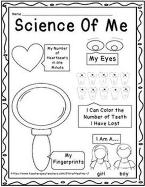 kindergarten activities myself 5 senses experiments to do with early elementary anatomy