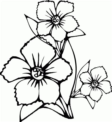 printable coloring pages of butterflies and flowers coloring pages flowers coloring pages butterfly and
