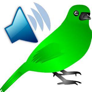 download bird calls sounds ringtones google play
