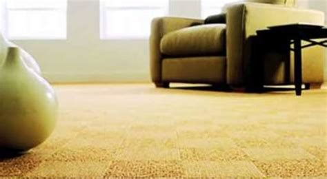 upholstery cleaning appleton wi carpet cleaning oshkosh wi carpet menzilperde net
