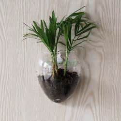 wall hanging glass flower vase hydroponic container