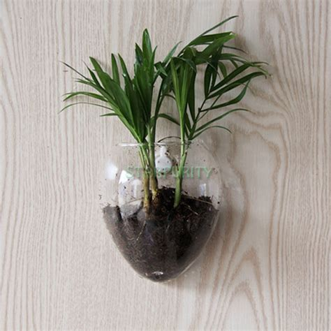 wall door hanging clear glass flower vase hydroponic