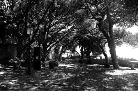 imagenes negro y blanco hd file castillo san jorge en lisboa en blanco y negro jpg