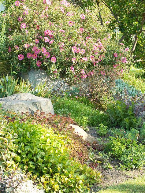 garten ideen sträucher steingarten anlegen und bepflanzen gestaltungsideen f 252 r