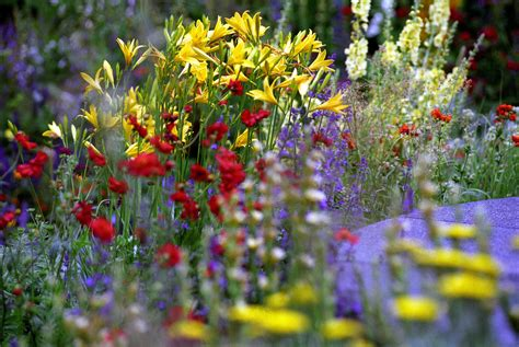 4 Rhs Garden Shows Perfect For A Spring Getaway Chelsea Flower Show Gardens