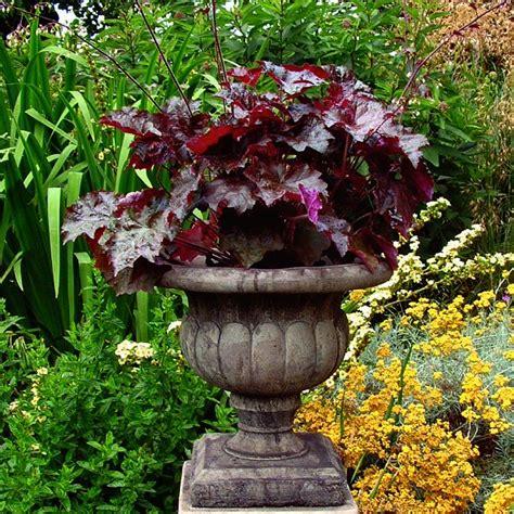 Vase Garden Vienna Vase Garden Ornament Garden Urns Pots Planters