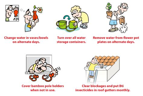 keeping our homes safe from dengue mother inc
