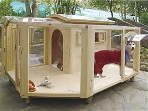 double story dog house holistic animal care