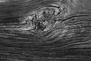 black and white wood shutter mike photography texture detail of wood in black white