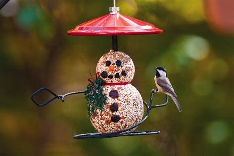 wild birds unlimited s cost of goods sold and first 12