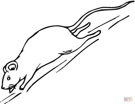desert mouse coloring page coloriage souris qui court coloriages 224 imprimer gratuits