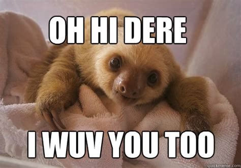 Baby Sloth Meme - oh hi dere i wuv you too baby sloth quickmeme