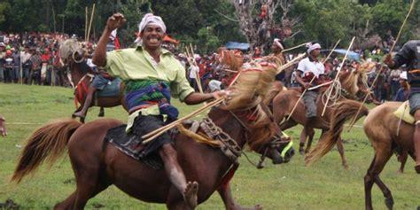 Kuda Liar Khas Sumbawa welcome to my inilah destinasi serba kuda di tahun kuda