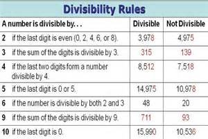 divisibility rules worksheets divisibility rules for 2 5