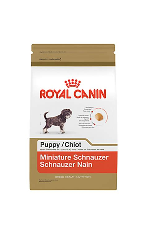 how much food to feed a pug puppy puppy food and how much to feed a puppy royal canin