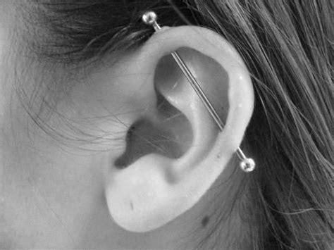 top ear bar bar ear piercing awesome piercings pinterest plugs