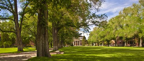 college trees earth day ceremony celebrates university s designation as