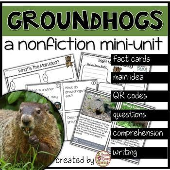 groundhog day vo 1000 images about groundhog day resources activities on