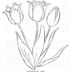 Best photos of tulip outline clip art free tulip clip art black and