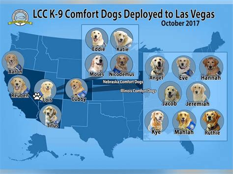 lcc k9 comfort dogs therapy dogs comfort survivors of las vegas shooting