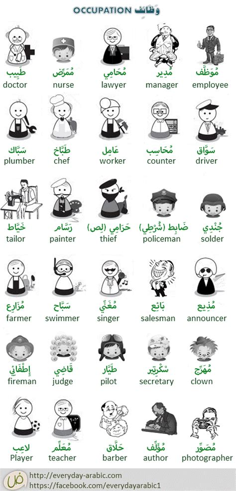 Kitchen Position Names by Everyday Arabic