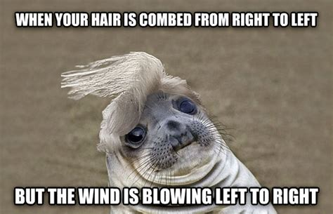 Wind Meme - i hate windy days rebrn com