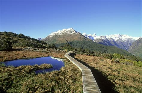 Search For In New Zealand Ten Of New Zealand S Most Scenic Day Hikes Lonely Planet