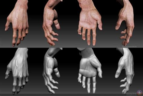 zbrush arm tutorial 91 best zbrush hand arm leg and foot images on pinterest