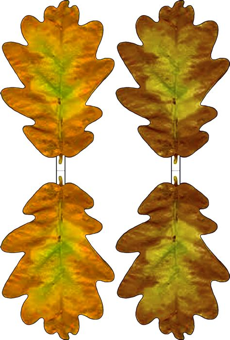 printable fall leaf decorations oak leaves pictures clipart best