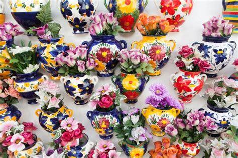 foto di vasi di fiori molti vasi di fiori all interno scaricare foto gratis