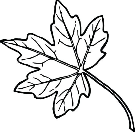 fall leaf coloring pages fall leaf coloring sheet oak leaf coloring page fall