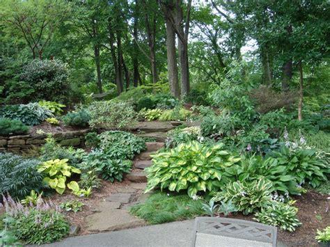 nursery garden layout pacific northwest native garden design google search