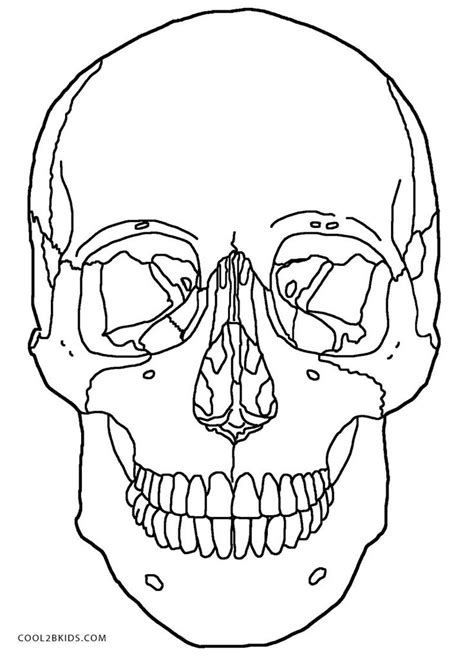 anatomy coloring pages for adults 100 ideas to try about printable sugar skulls coloring