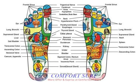 Foot Mat Acupressure Reflexology by Image