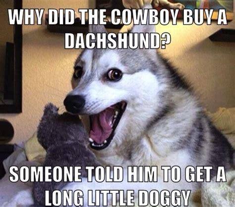 Dog Jokes Meme - researching funny the university of colorado s humor lab