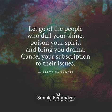 letting go the quote book books let go of the who dull your shine by steve maraboli